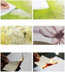 Влагостойкие фотообои бумажные