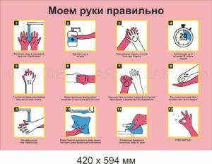 Плакат Коронавирус А2, А1